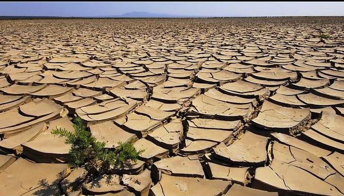 terra-arida