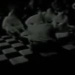 rituale-satanico-loggia-massonica